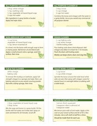 Eco Cleaning Recipes