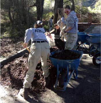 AmeriCorps Team Blue 6 works at Highlands to restore old oaks' grove