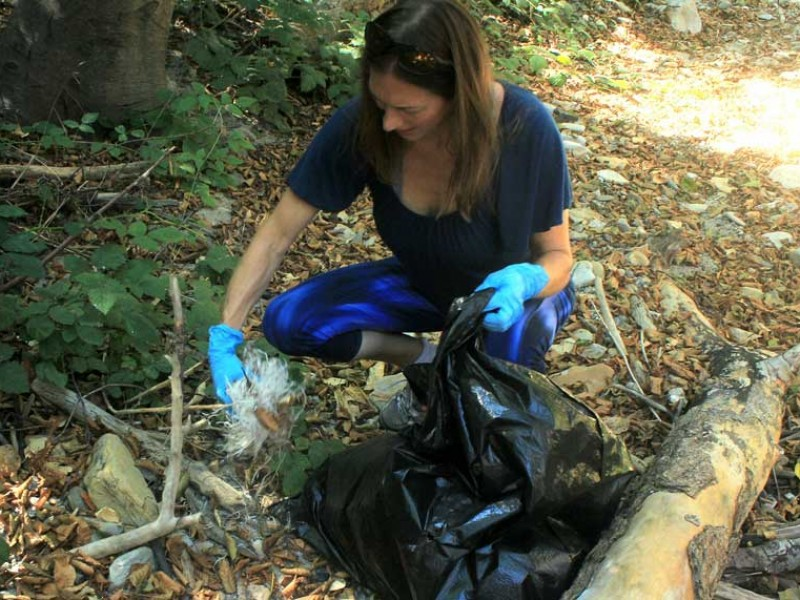 river-road-cleanup-jen-mount-adding-her-contribution-sep-17-2016