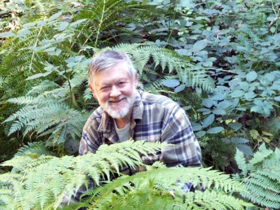 Fred McPherson, Among Bear Creek Ferns, 10/7/14