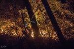 Big Basin Fire 2019