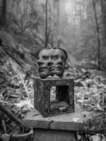 Faces of the wildfire
